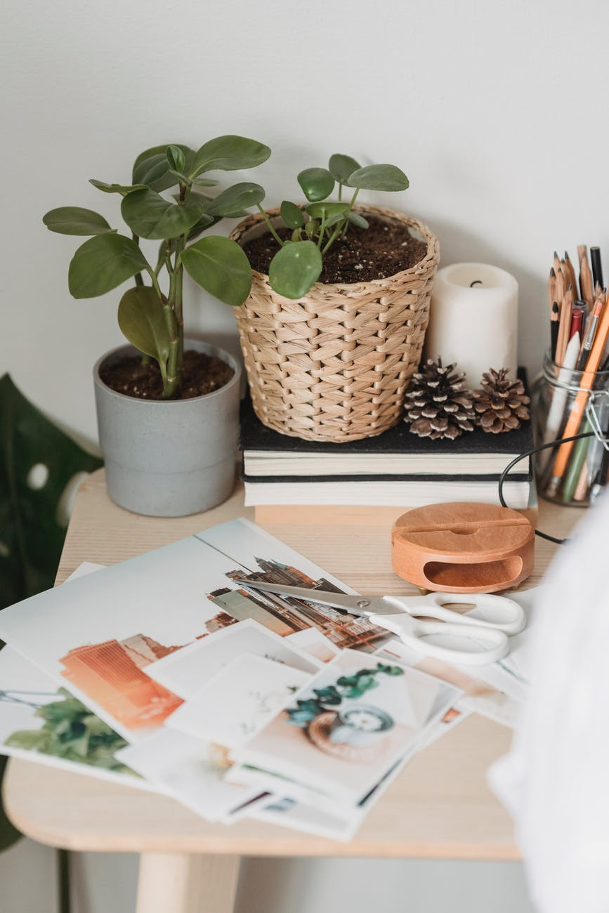 table with various images and scissors near potted houseplants